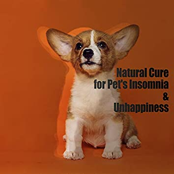 Natural Cure for Pet's Insomnia & Unhappiness: Try to Help Your Pupils, Healing New Age Sounds, Let Them Relaxation
