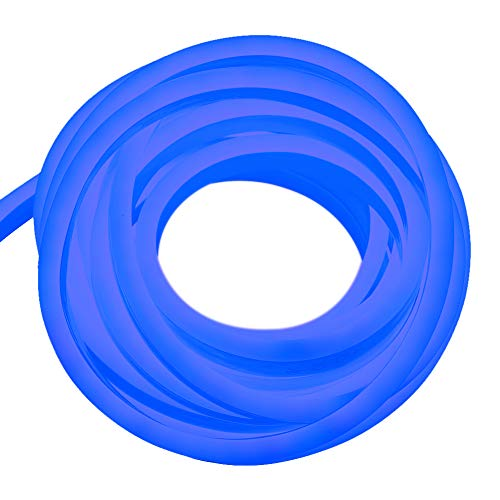 XUNATA 328ft LED Rope Neon Light, 110V Waterproof Flexible US Plug 12000 Units SMD 2835 LED Strip Lights for Home Indoor Outdoor Decoration (Blue)