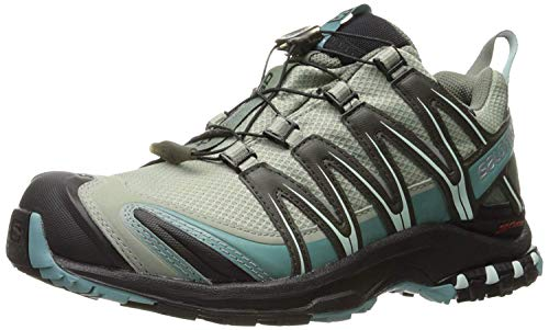 Salomon Women's XA Pro 3D Cs Wp Trail Running Shoes, Shadow/Black/Artic, 8.5