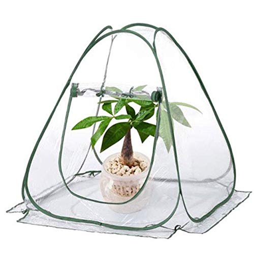 Portable Mini Pop up PVC Greenhouse Tent Grow House Gardening Plant Cover for Garden Outdoor Backyard 27.6 * 27.6 * 31.5in
