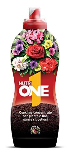 NUTRI 1 ONE Concime Liquido Concentrato per Piante e Fiori sani e rigogliosi. Con estratti di origine vegetale e microelementi, 1 lt