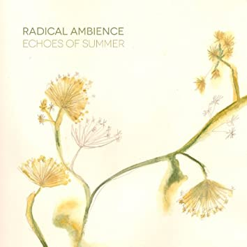 Echoes of Summer