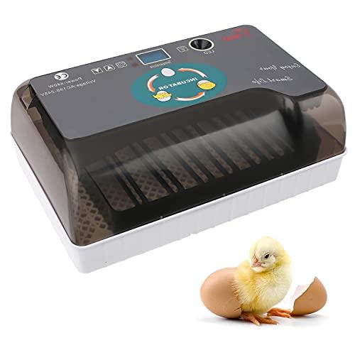Couveuse Incubateur Automatique de 12 œufs, Incubateurs avec Eclairage LED, Retourneur Automatique d'oeufs, Affichage Numérique et Contrôle de Température Efficace et Intelligent