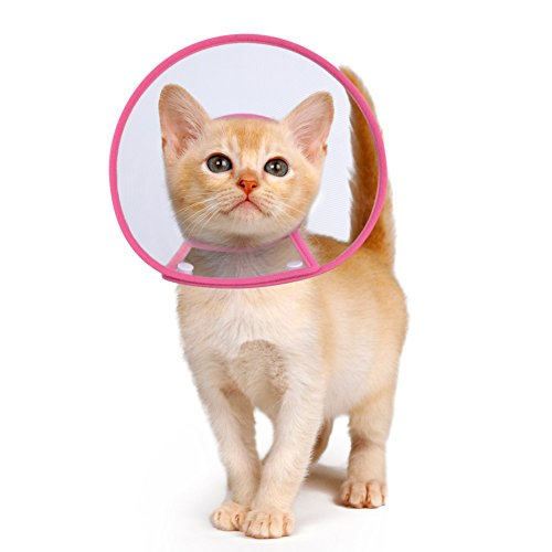 PETBABA Cat Cone Collar in Recovery, Clear Elizabethan Not Block Vision, Soft Padded E-Collar Protect Neck, Suitable Kitten Puppy Dog Pet in Surgery Remedy Grooming - S in Rose