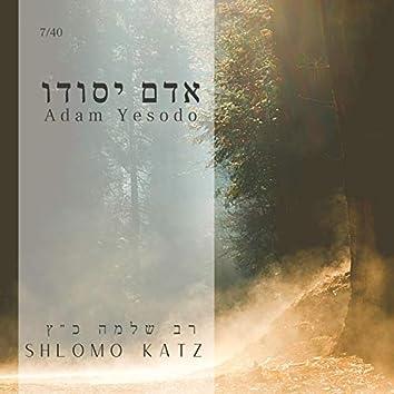 Adam Yesodo