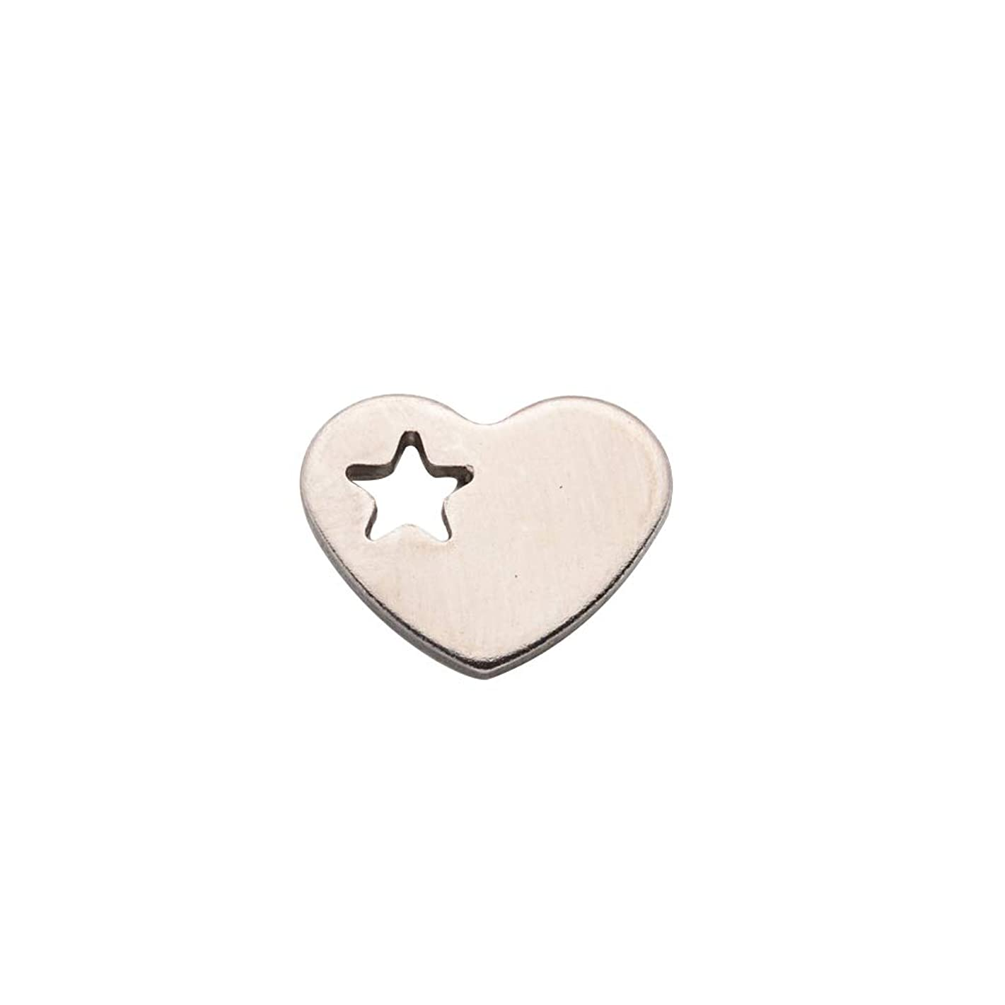 ARRICRAFT 200pcs Stainless Steel Flat Heart Charms Silver Stamping Tag Pendant Blank for Bracelet Necklace Jewelry Making, 12.5x10x1mm