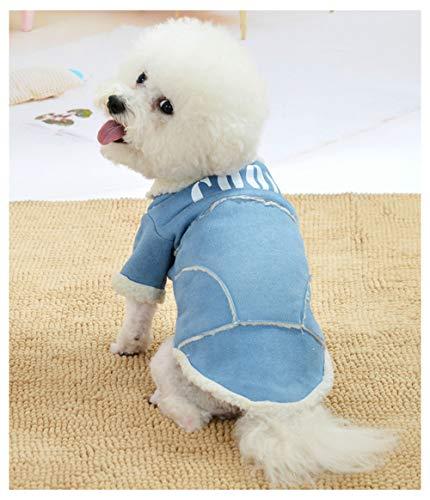 Haustier-Kleidung, Herbst- und Winterkleidung, koreanische Version aus Lammfell und Samt, dick, doppellagige Baumwolle, Teddy-Kleidung für Hunde und Katzen