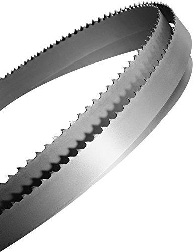 Starrett NM7102096 2096 x 10 x 0,65 mm Skip 6T Duratec SFB Carbon-Sägeblatt