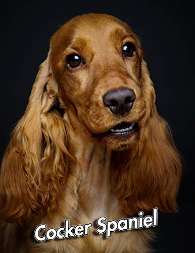 Cocker Spaniel: Weekly Calendar July 2019 - December 2021 | 30 Months | 131 pages 8.5 x 11 in. | Planner | Diary | Organizer | Agenda | Appointment | To-Do Soft Cover