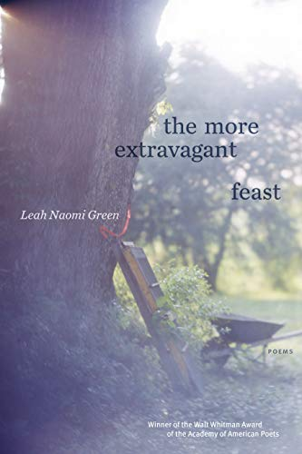 The More Extravagant Feast: Poems