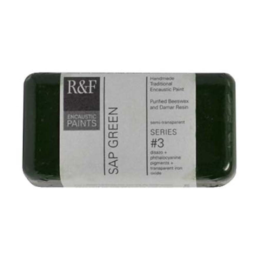 R&F Encaustic 40ml Paint, Sap Green