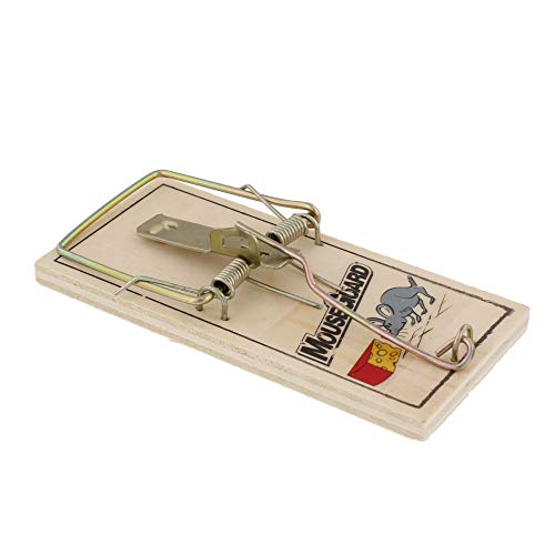 4 Mouse Traps Mouse Guard Twin Wound Spring Metal Bait Pedal