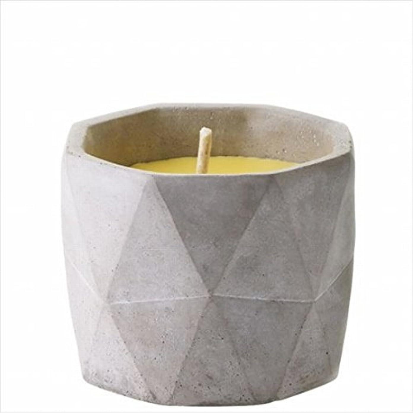 未就学実証する誇張カメヤマキャンドル(kameyama candle) POiNT A LA LiGNE セメントポット シトロネラキャンドルM(屋外用)