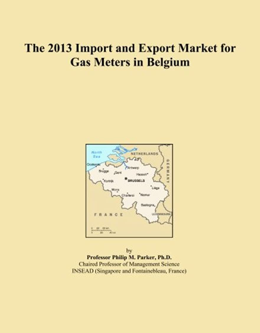 忠誠追加食い違いThe 2013 Import and Export Market for Gas Meters in Belgium