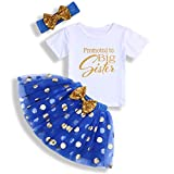 Toddler Baby Kid Girls Big Sister Outfits Short Sleeve T-Shirt Top+Tutu Skirt with Headband Clothing Set (White & Blue, 5-6T)