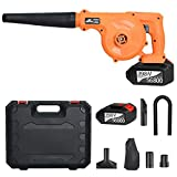 Best Snow Blowers - TOPQSC 2 in 1 Leaf Blower 21V Cordless Review