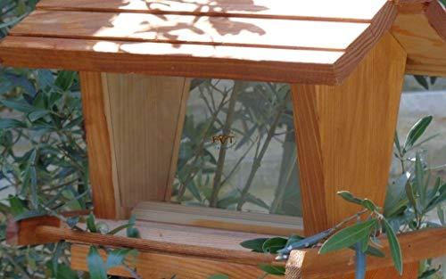 vogelhaus mit ständer BTV-X-VOFU2G-MS-hbraun002 Robustes, stabiles PREMIUM Vogelhaus mit ständer, FUTTERHAUS für Vögel, WINTERFEST - MIT FUTTERSCHACHT Futtervorrat, Vogelfutter-Station Farbe braun hellbraun behandelt / lasiert braun/orange/natur, Ausführung Naturholz, mit KLARSICHT-Scheibe zur Füllstandkontrolle, Schreinerarbeit aus Vollholz