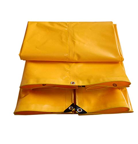 DJPB Sunscreen Tarpaulin Multi-Purpose Garden Tarp Transparent Heavy Duty Outdoor Thickening Ground Sheet Covers For Camping 4PB08 (Size : 2X3M)