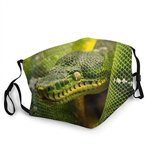 Comfortable Face Mask Snake Reptile Snake Reptile Flower Background Sun-Proof Fashion Bandana Headwear for Fishing