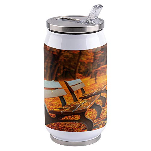 Water Bottle | Vacuum Insulated Stainless Steel Water Bottle 10oz | Autumn Park Wooden Chair Fallen Leaves | Double Walled Water Bottles | Wide Mouth with Straw Lid | Leak Proof Flip-Top