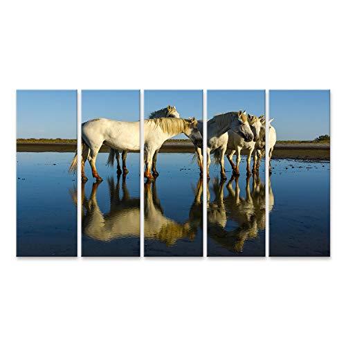 islandburner Cuadro en Lienzo Caballos de Camarga Reflexiones Provenza Francia Blanco Caballo de Cerca Su Reflejo Agua Cuadros Colores Muy llamativa