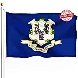 DFLIVE Double Sided Connecticut State Flag 3x5ft Heavy Duty 3 Ply Polyester CT State Flags Indoor and Outdoor Use