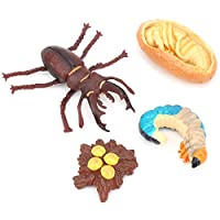 子供のための動物モデルおもちゃ動物成長サイクルモード(Stag beetle growth cycle)