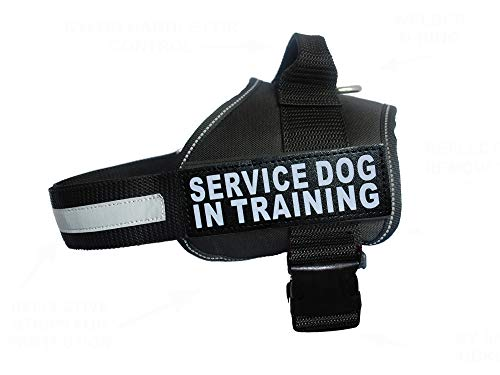 "Doggie Stylz Service Dog in Training Vest with Hook and Loop Straps and Handle – Harness Comes in Sizes XXS to XXL – Three Colors – Dog Harness Features 2 Reflective Patches (Girth 19""- 25' Black)"