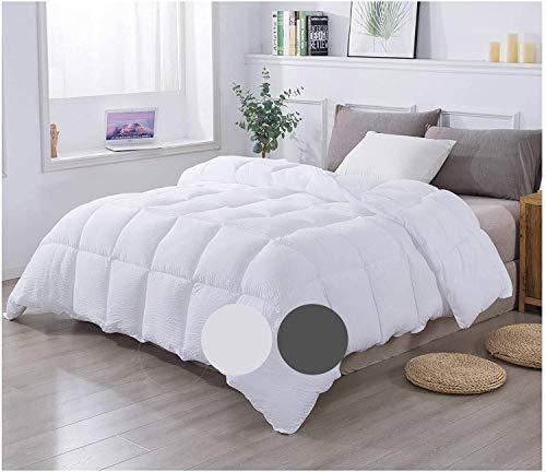 KASENTEX All Season Goose Down Alternative Reversible Comforter, Luxury Brushed Microfiber Duvet Insert, Light White, Queen Size
