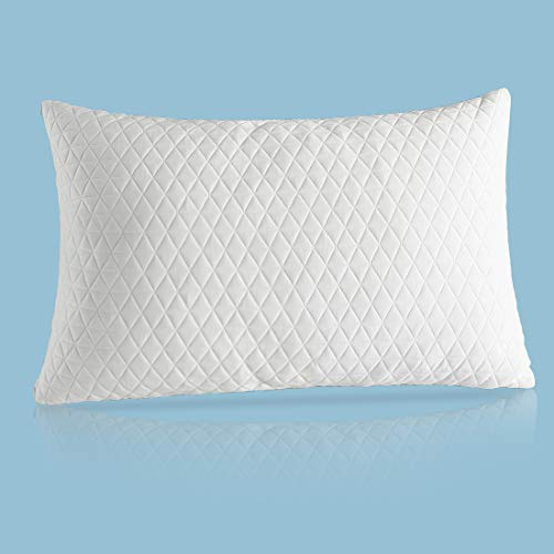 Fraylon Premium Queen Adjustable Loft Pillow - Hypoallergenic Cross-Cut Memory Foam Fill - Washable Cover from Bamboo Derived Rayon - Breathable Bed Pillow for Back, Stomach, Side Sleepers
