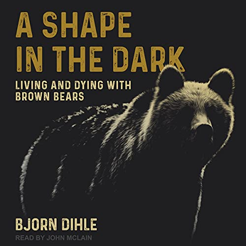 A Shape in the Dark Audiobook By Bjorn Dihle cover art