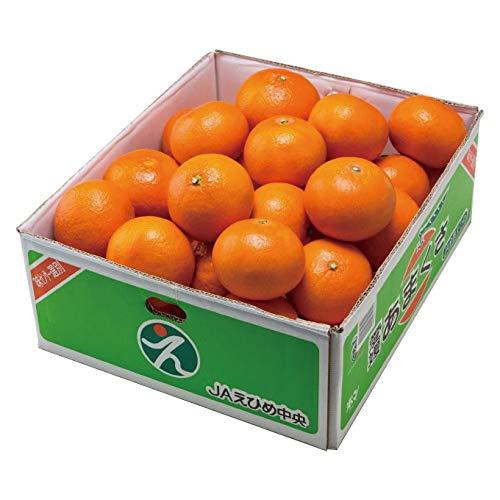 みかん あまくさ 天草 紅まどんなの親品種 赤秀 2L〜Sサイズ 5kg JAえひめ中央 中島産 蜜柑 ミカン