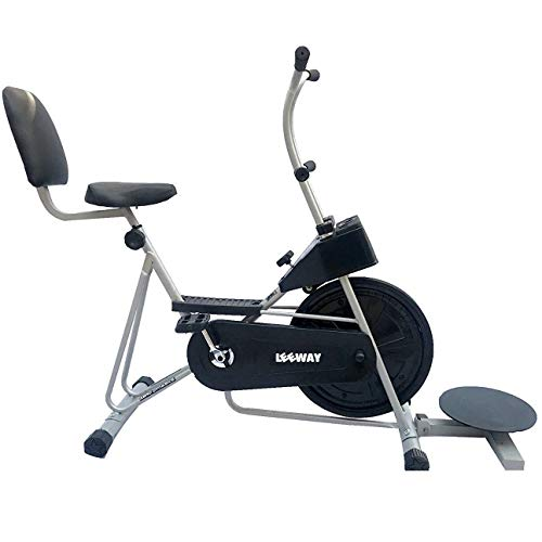 Leeway Fix Handle Gym Bike FitnessCross Fit Exercise Cycle with Back Support and Twister for Cardio Work Out/ Weight Loss Stamina 201- Silver
