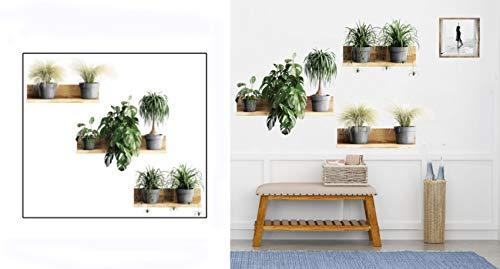 Pegatinas Pared Plantas Verde Adhesivo Pared Planta en Maceta con Estante 3d Adhesivos Pared (plantas - monstera deliciosa)