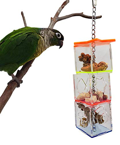 Tropical Chickens Parrot Bird Boredom Buster Forage Box Creative Hanging Treat Foraging Toy Conure Cockatiel for Small Bird Enrichment Transparent Acrylic Food Holder