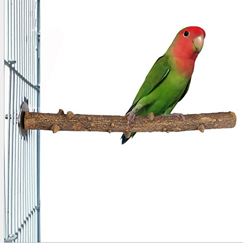 Soporte de Madera para pájaros y Loros Fresca Espinosa Madera Perca Soporte Pájaro Madera Chew Masticar Juguete Pájaro Pata Moler Percha Jaula Colgando Juguete de Entrenamiento(3×35cm)