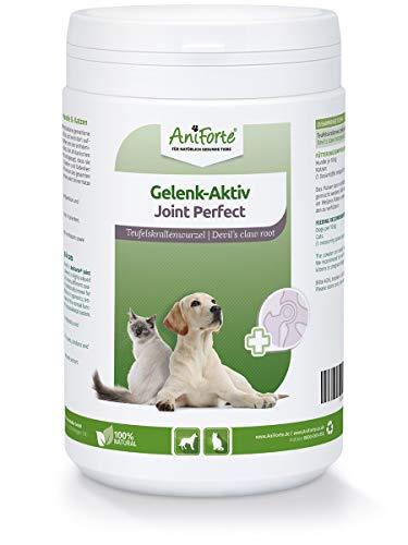 AniForte Gelenk Aktiv Teufelskralle Hunde & Katzen 500g - Gelenkpulver für Sehnen & Bänder, Unterstützung der Gelenke, Beweglichkeit & Gelenkfunktion, Teufelskralle Hund & Katze, Adult & Senior