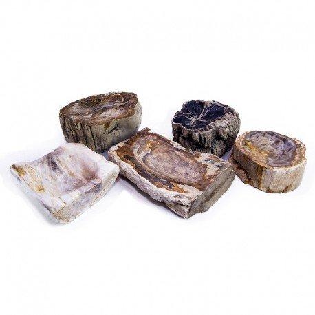 Cuenco | Madera fósiles | Pulido | Indonesia | Hecho a mano | Para Exterior e Interior | Reutilizable