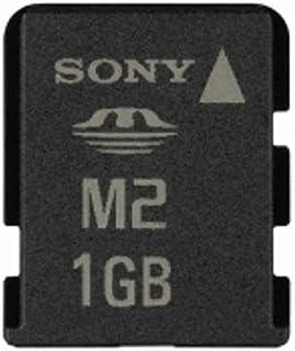 1?GBメモリースティックマイクロ( m2?)