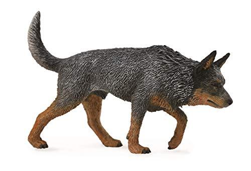 CollectA (コレクタ) オーストラリアンキャトルドッグ 犬 フィギュア 88672