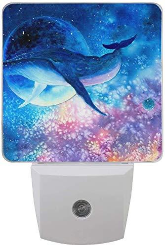 Paquete de 2 lámparas LED de noche con sensor de atardecer a amanecer para dormitorio, baño, pasillo, escaleras, 0,5 W, Reino Unido Jack