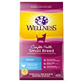 Best Dry Dog Food - Wellness Complete Health Natural Dry Small Breed Senior Review