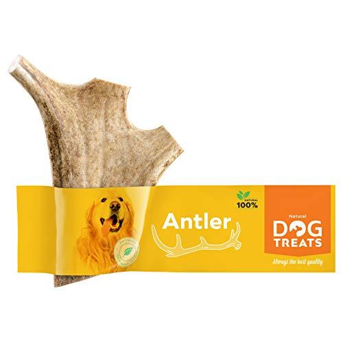 Natural Dog Treats Premium Damhirschgeweih für Hunde 100% Natürlich Kauspielzeug Kauknochen Hundeknochen Geweih, Größe Medium
