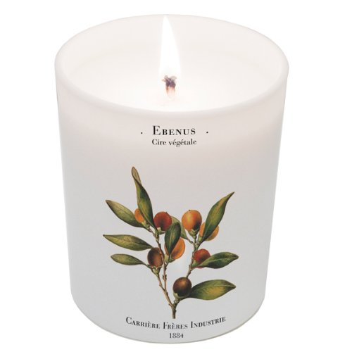 Ebenus (Ebony) Candle 6.7oz candle by Carriere Freres Industrie