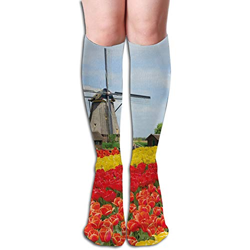 Rows of Colorful Tulips Northern Europe Rural Garden Bed Picturesque Summer,Unisex Fashion Below Knee High Socks One Size(50CM)