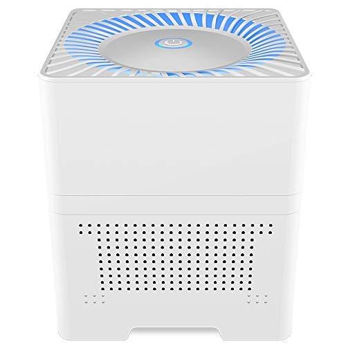 IRIVER BLANK Purificateur d'air Ozoniseur d'air pour Désodorisant Maison Générateur D'ozone Ioniseur Stérilisation Filtre Germicide Désinfection Salle Blanche