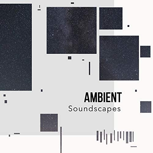Forest Ambience & Forest Soundscapes