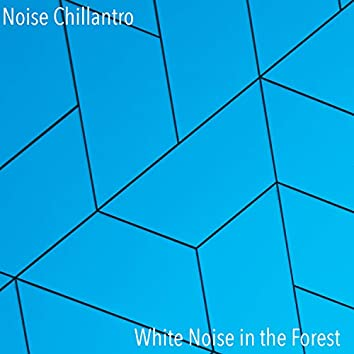 White Noise in the Forest