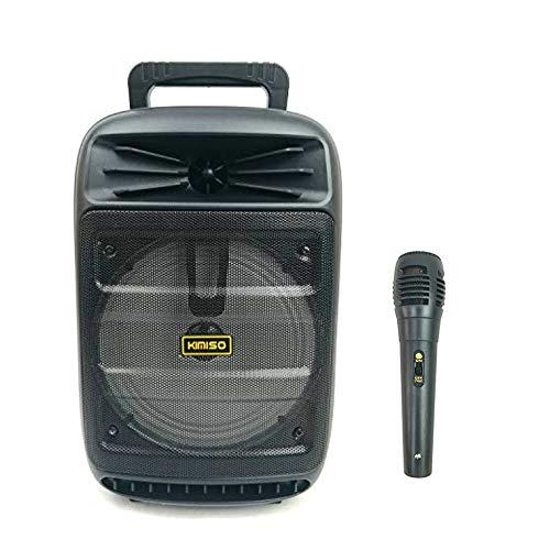 Altavoz karaoke con micrófono portátil recargable 1200w Máquina de Karaoke Portátil con Bluetooth (A3385-Negro)