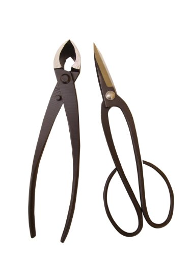 Genki-Bonsai Bonsaiwerkzeugset mit 2 Profi Werkzeugen in schwarz (Bonsaischere mittelbreit, Konkavzange 200 mm)